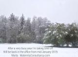 Winter holidays 2018
